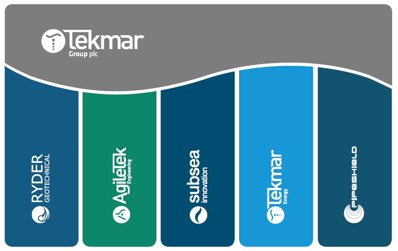 This image has an empty alt attribute; its file name is Tekmar-Group-Pillars.png
